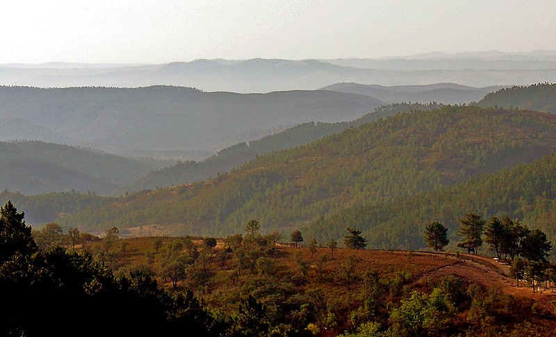 view of forests and mountains in Spain
