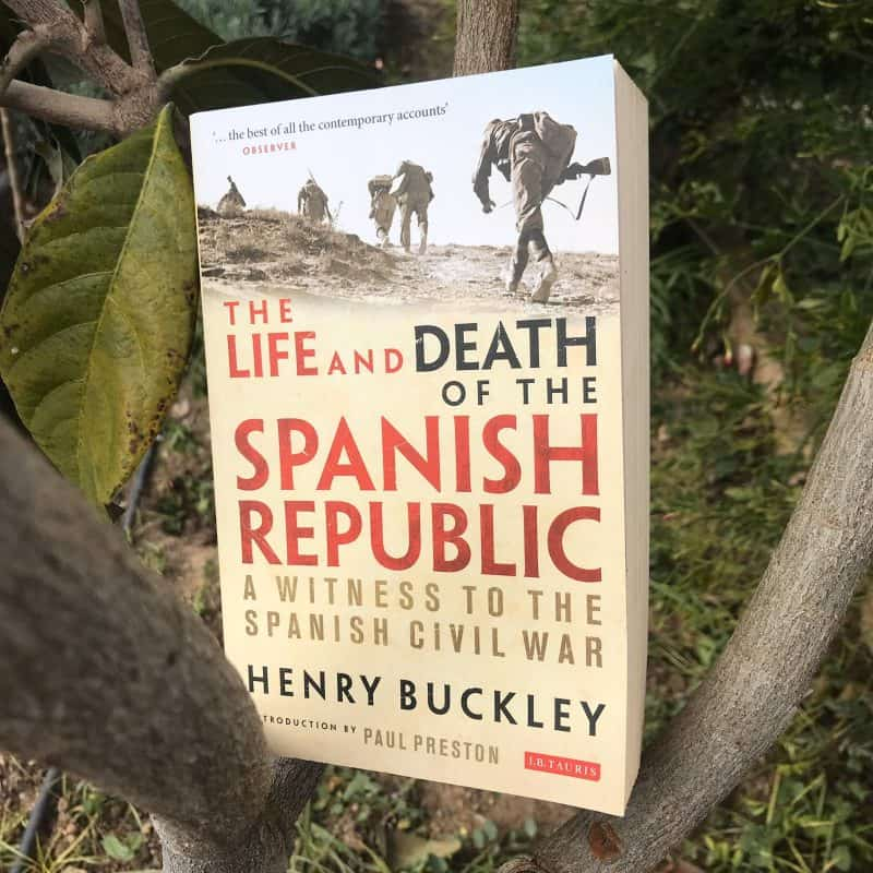 Book about Spain in tree