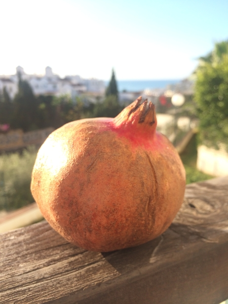 Granada In Spanish Means Pomegranate It Is The Citys Name